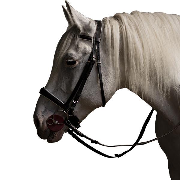 Уздечка с немецким капсюлем купить в интернет магазине конной амуниции